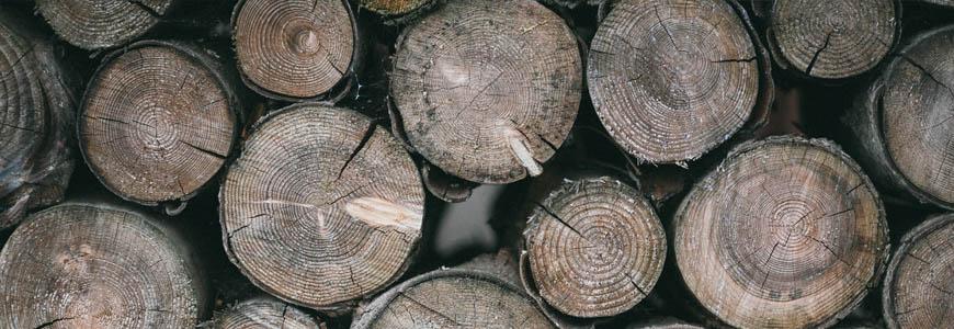 Modal matiere textile ecologique issue du bois